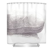Readers Case Shower Curtain