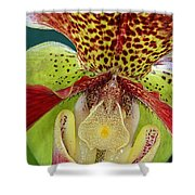 Ready Fpr My Close Up Shower Curtain