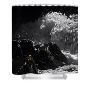 Ready Set Action Shower Curtain