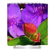 Ready To Bloom Shower Curtain