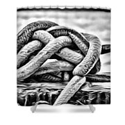 Ready To Dock Art Shower Curtain