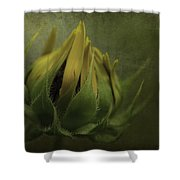 Ready To Flower Shower Curtain