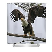 Ready To Go Shower Curtain