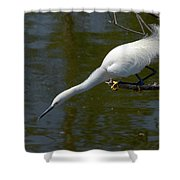Ready..set.. Shower Curtain