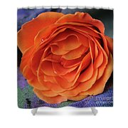 Really Orange Rose Shower Curtain