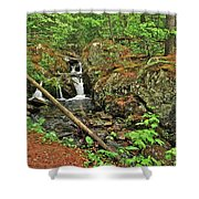 Reany Falls 3 Shower Curtain