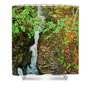 Reany Falls 4548 Shower Curtain