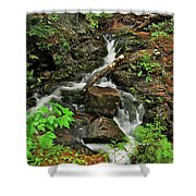 Reany Falls 5 Shower Curtain