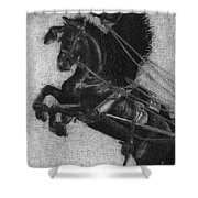 Rearing Horses Shower Curtain by Eric Fan