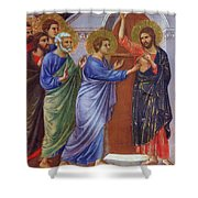 Reassuring Thomas Fragment 1311 Shower Curtain