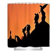 Recoleta 01 Shower Curtain