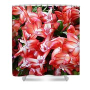 Red Abundance Shower Curtain