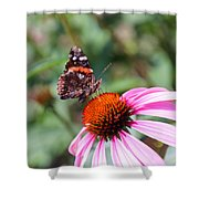 Red Admiral 1543 Shower Curtain