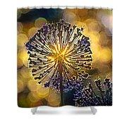 Red Allium Flower Shower Curtain