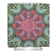 Red Amaryllis Trio Kaleidoscope Shower Curtain