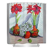 Red Amayrillis Shower Curtain