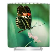 Red And Black Butterfly On White Flower Shower Curtain