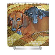 Red And Black Dachshunds - Best Buds Shower Curtain