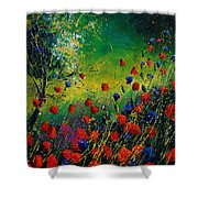 Red And Blue Poppies 67 1524 Shower Curtain