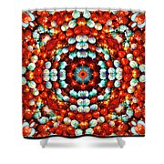 Red And Blue Stones Shower Curtain