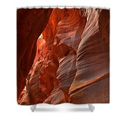 Red And Brown Swirling Sandstone Shower Curtain