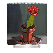 Red And Greed Cactus Shower Curtain