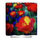 Red And Orange Tulips Shower Curtain