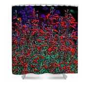 Red And Purple Flowers Shower Curtain
