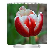 Red And White Bloom Shower Curtain