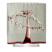 Red And White Crown Shower Curtain