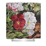 Red And White Pansies Shower Curtain
