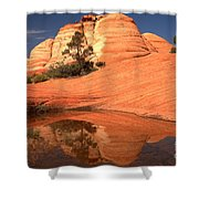 Red And White Reflections In Blue Shower Curtain