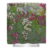 Red And White Roses  Medium Toned Abstract Shower Curtain