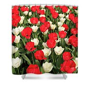 Red And White Shower Curtain by Tracy Hall