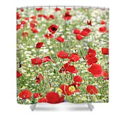 Red And White Wild Flowers Spring Scene Shower Curtain