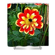 Red And Yellow Flower With Bee Shower Curtain