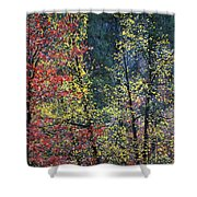 Red And Yellow Leaves Abstract Vertical Number 2 Shower Curtain