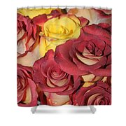 Red And Yellow Roses Shower Curtain