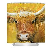Red Angus Cow Shower Curtain