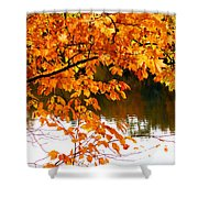 Red Autumn Leaves 2 Shower Curtain
