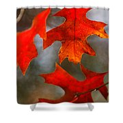 Red Autumn Leaves Shower Curtain
