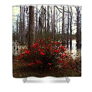 Red Azaleas In The Swamp Shower Curtain