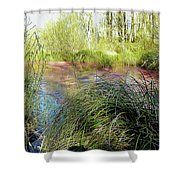 Red Azolla Shower Curtain