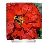 Red Ball Of Fire Shower Curtain