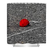 Red Balloon IIi Shower Curtain