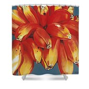 Red Bananas Of Jocotepec Shower Curtain