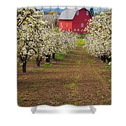 Red Barn Avenue Shower Curtain by Mike  Dawson