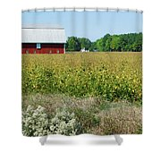 Red Barn In Pasture Shower Curtain
