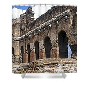 Red Basilica Scene 3 Shower Curtain