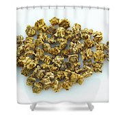 Red Beet Seeds Shower Curtain